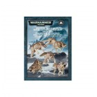 Space Wolves Fenrisian Wolf Pack / Фенризианская стая Космоволков