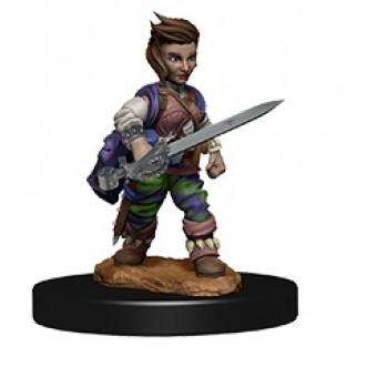 Миниатюры для Pathfinder Deep Cuts: Female Halfling Rogue