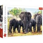Пазл Trefl 1000 деталей Африканские слоны