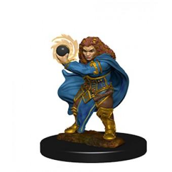 Миниатюры для D&D Nolzur`s Marvelous: Dwarf Female Wizards
