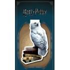 закладка магнитная Гарри Поттер. Букля
